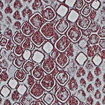 Pelle Pieno Fiore Vera Genuine Leather Morbida Artigianale Stampa Rettile Serpente Pitone Borsa Personalizzata Lux